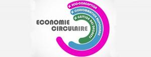 Etudes et Recherches du Cerib - Diffusion des Connaissances (Économie circulaire)