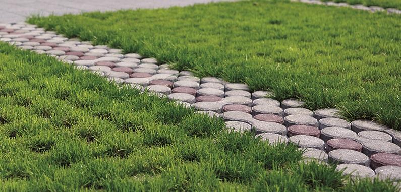 Pavés drainants pour la gestion des eaux pluviales